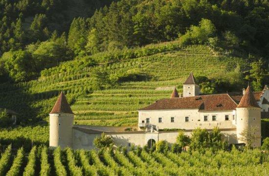 schnalserhof-latsch-vinschgau-suedtirol (12)
